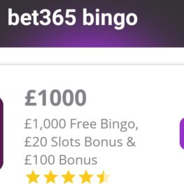 Latest free bingo app